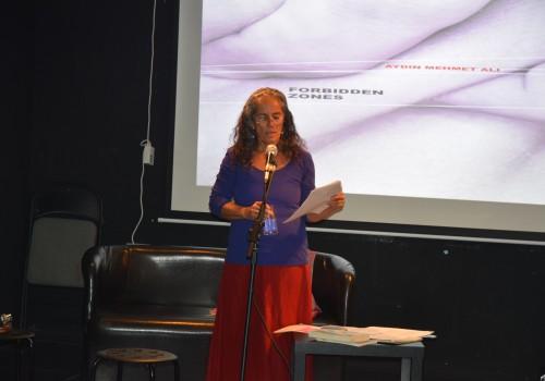 Engeller ve sınırların ötesinde bir kadın: Aydın Mehmet Ali
