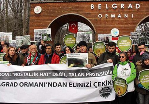 Environmentalists protest tramway construction in Istanbul's Belgrade Forest