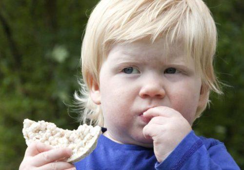 Pirinç patlağı tehlikeli oranda arsenik içeriyor