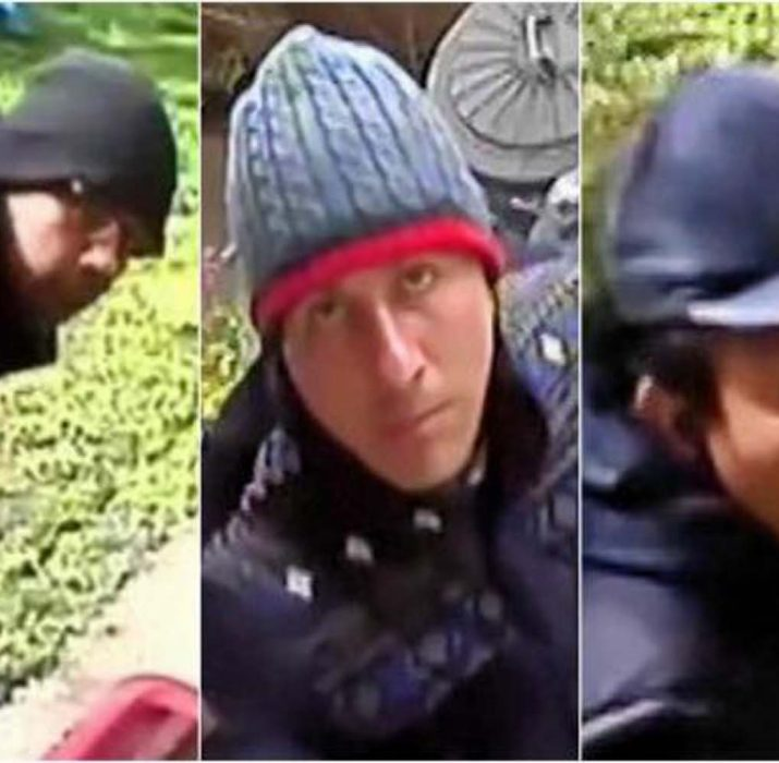 Police release CCTV in hunt for burglars who stole antique collection from Wimbledon home
