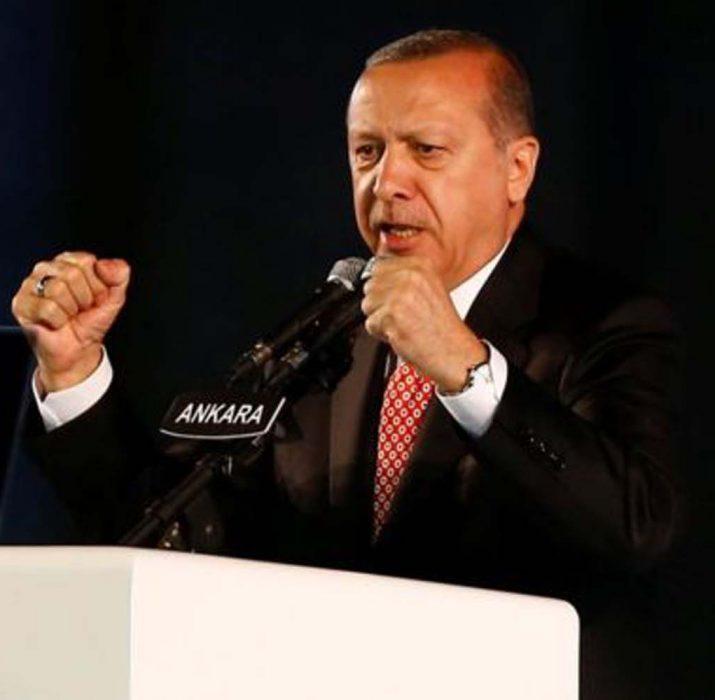 Guardian, Erdoğan'ın istediği adaleti yorumladı
