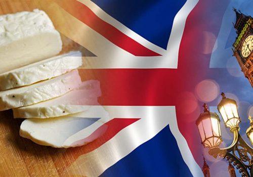 İngiliz firma hellim peyniri ithal etmek istiyor