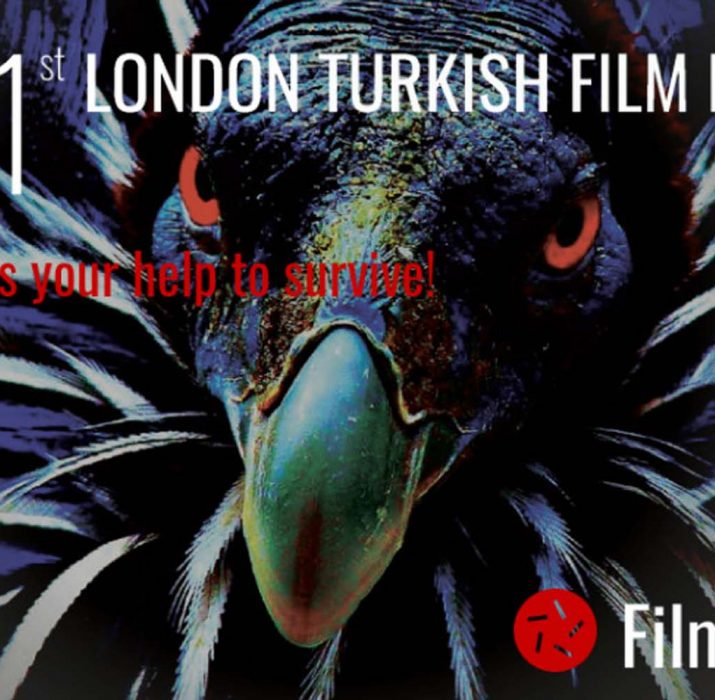 London Turkish Film Festival needs your help!