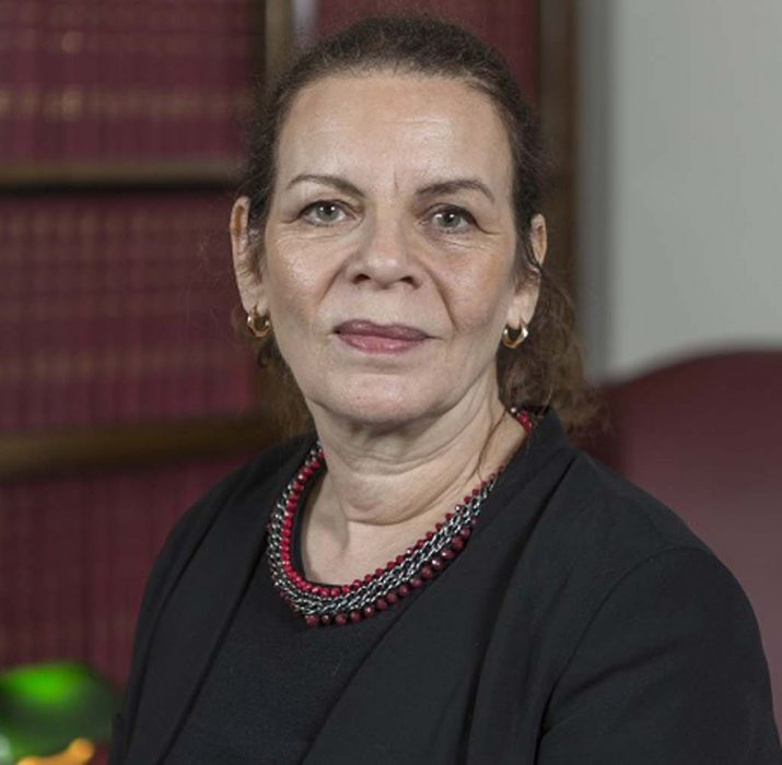 Baroness Meral Hussein- Ece calls for peace between Turkish and Greek Cypriots