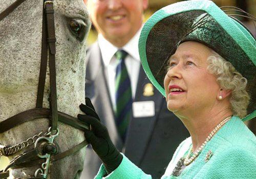 Kraliçe, at yarışlarından 7 milyon sterlin kazandı