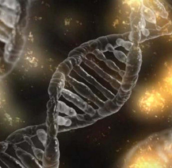 Evrim teorisi ile uzaylı yaşamı