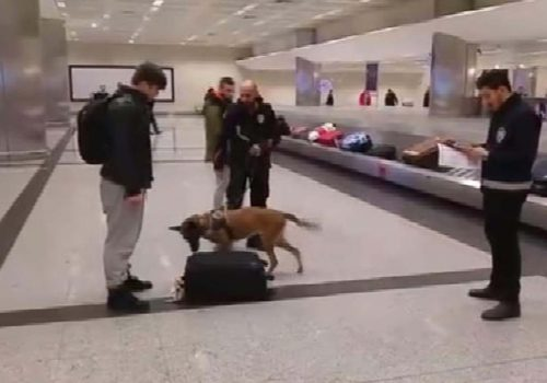 Turkish police use dogs to search belongings of Dutch passengers at Istanbul airport