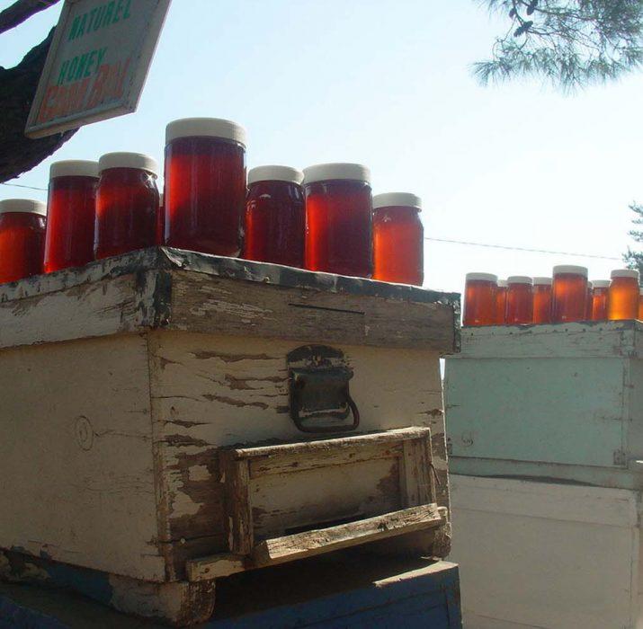 Turkish honey export revenues soared 60 pct in 2017