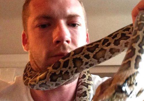 Evcil yılanı İngiliz adamı boğdu