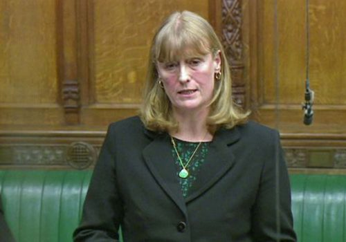 MP Joan Ryan urges for 'Olive Branch Attack' to end