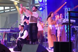 Cypriot Wine Festival was held