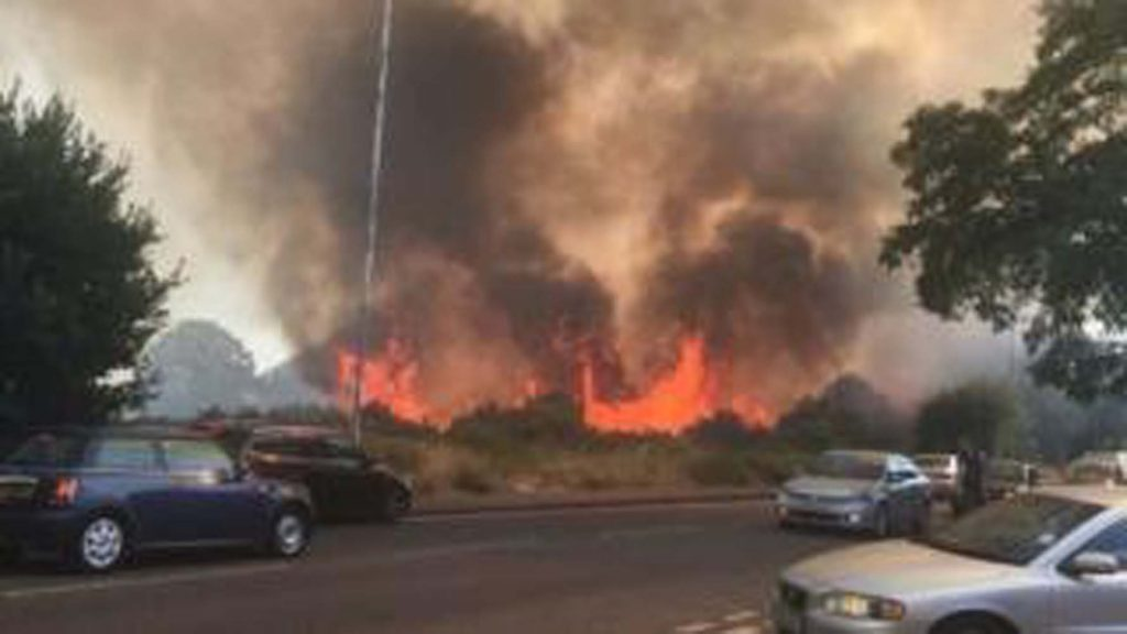 Wanstead Flats grass fire tackled by 200 firefighters