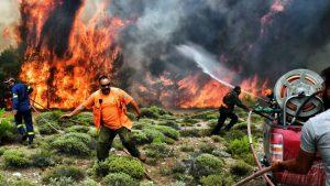 Yunanistan yangınında acı bilanço…