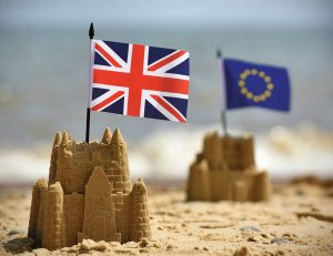 """Londra'da yaşayan toplumumuz:  """"Brexit süreci bir an evvel bitsin"""""""