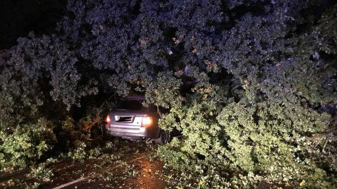 Kazadan kurtulan sürücüye, 'piyango bileti al' dedi…