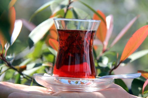 Dünyada en çok çayı Türkler içiyor