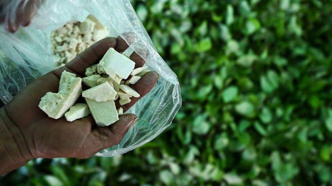 Kolombiya'da kokain üretimi 2017'de rekor kırdı