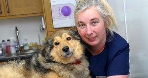 KKTC'deyaşayan İngiliz aile, 'Hayvanlara Eziyet'ten yargılanacak