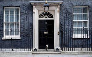 İngiltere Başbakanlığı kedisi yağmurda kaldı