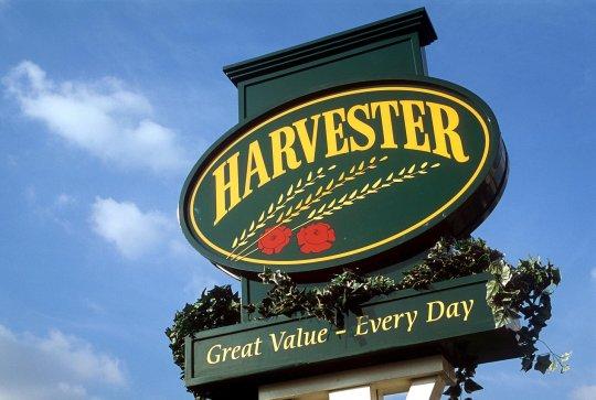 İngiltere'nin ünlü publarında 'dışkı bakterisi' şoku