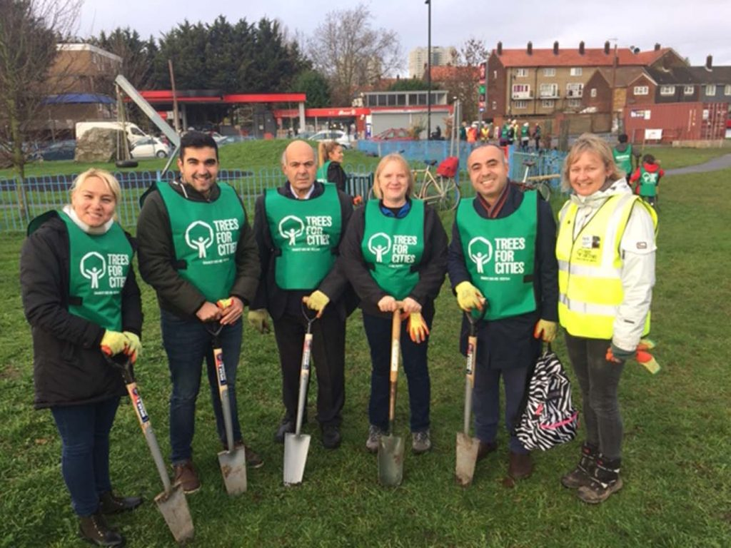New trees provided in Enfield