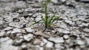 Dünyanın en zenginleri hayatlarını değiştirmedikçe iklim hedeflerine ulaşılması mümkün değil