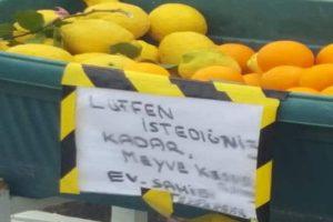 Girne'de İngiliz çiftten duyarlı davranış