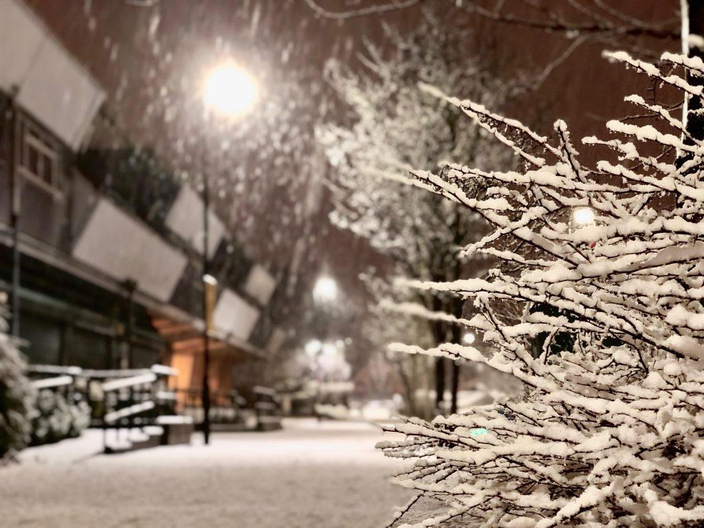 Londra'da yılın ilk karından manzaralar