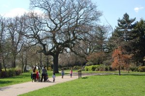 Haringey Council clashes with Finsbury Park report