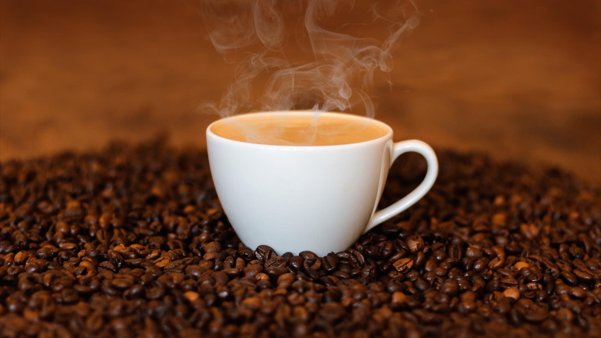 Dünyada kahve bitkisi tükenme riski altında
