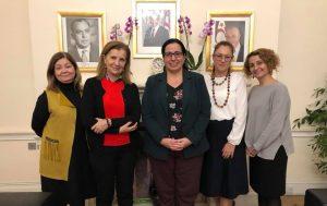 Canaltay: İngiltere'de yaşayan Kıbrıslı Türkler bizim için çok önemli