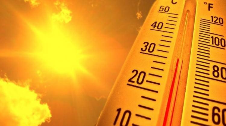 İngiltere son yılların en sıcak 'Şubat'ını yaşayabilir