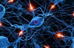 Beyin 90'lı yaşlara kadar 'yeni hücre üretebiliyor'