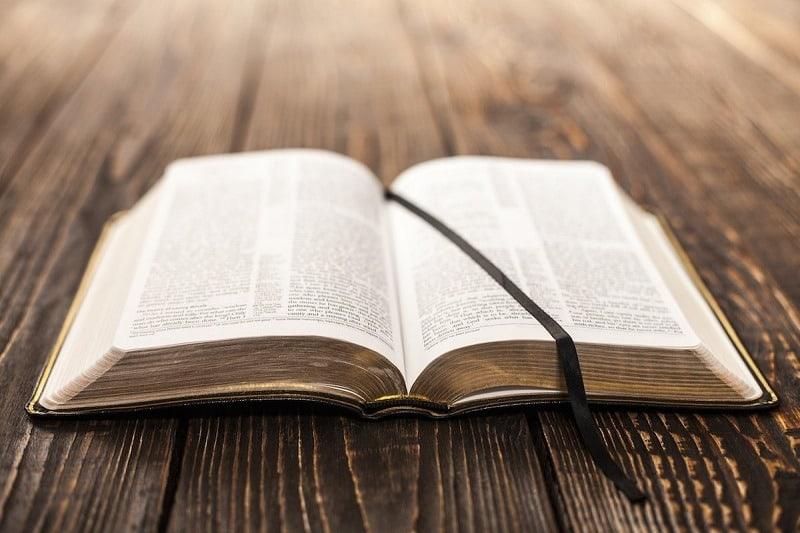 """""""İncil intikam ve şiddet tasvirleriyle dolu"""" dedi, iltica talebini reddetti"""
