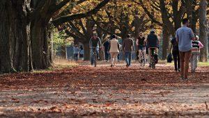 A 20 minute walk can help reduce stress