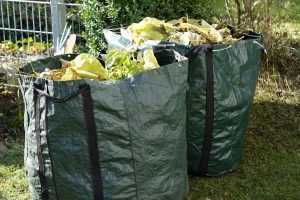 Haringey number 1 for 'illegally dumping garden waste'