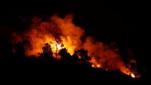 Avrupa tarihin en sıcak yazlarından birini yaşıyor; İspanya'daki orman yangını büyüyor