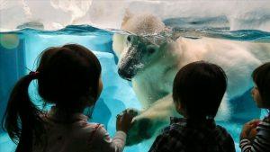 İklim değişikliği çocukların sağlığını tehdit ediyor