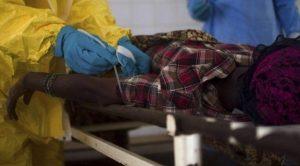 Fare dışkısıyla bulaşan salgın hastalık 15 can aldı