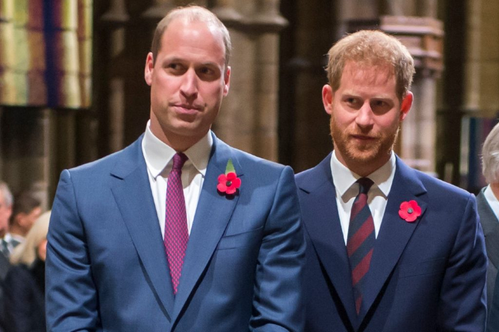 Harry and William deny 'offensive' bullying claims