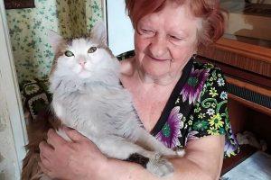 Kedi uykuda olan sahibini ısırarak yangından kurtardı