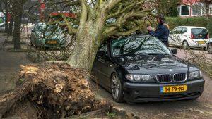İngiltere'de fırtınaların tahmini sigorta hasarı 363 milyon poundu aştı