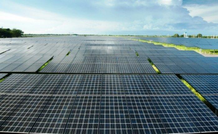 İngiltere'nin en büyük güneş santrali kuruluyor