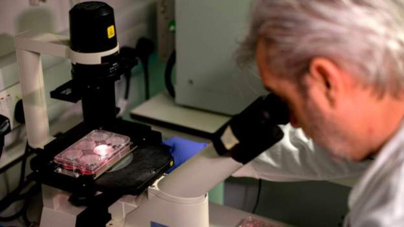 Oxford Üniversitesi ve ilaç üretim devi AstraZeneca koronavirüs aşısı için güçlerini birleştirdi