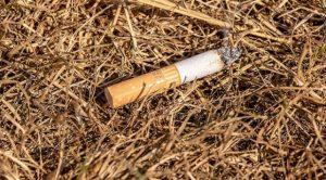 İstanbul'da yangınların yüzde 35'i sigara kaynaklı