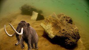 7,5 milyon yıllık fosili su altında görüntülendi