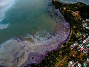 Mauritius'ta çevre felaketi büyüyor