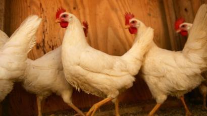 Brezilya'dan Çin'e gönderilen tavuk kanatlarında koronavirüs tespit edildi