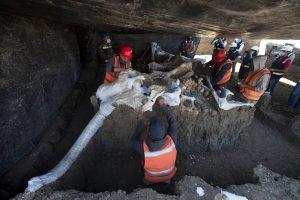 Meksika'da bulunan mamut fosillerinin sayısı 200'e yükseldi