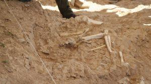 7,5 milyon yıllık zürafa, antilop ve fil fosilleri bulundu